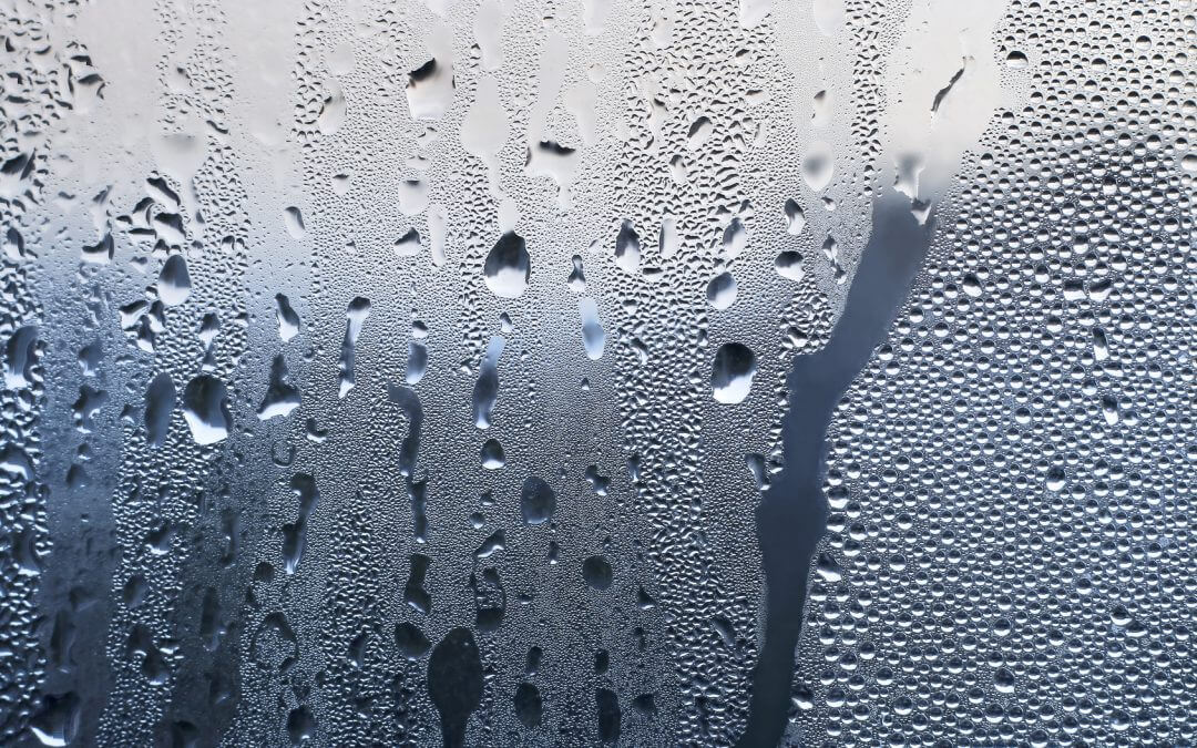 Prevent and treat condensation in Northwich