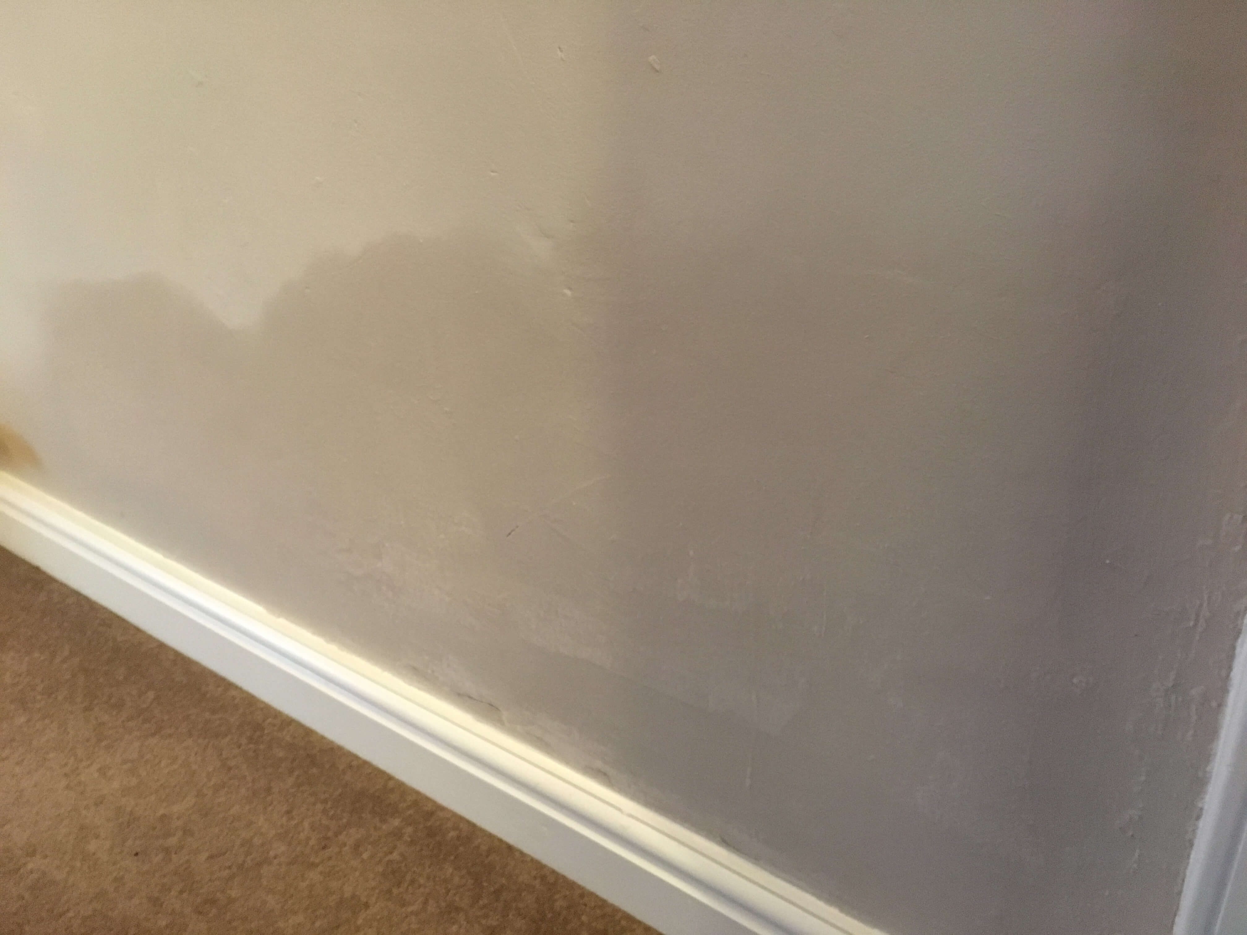 Rising Damp in wall in Winsford, Cheshire